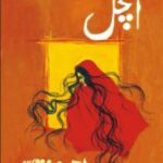anchal-by-ahmad-nadeem-qasmi-pdf-free-download.jpg