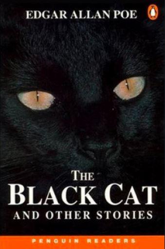 the black cat,the black cat summary